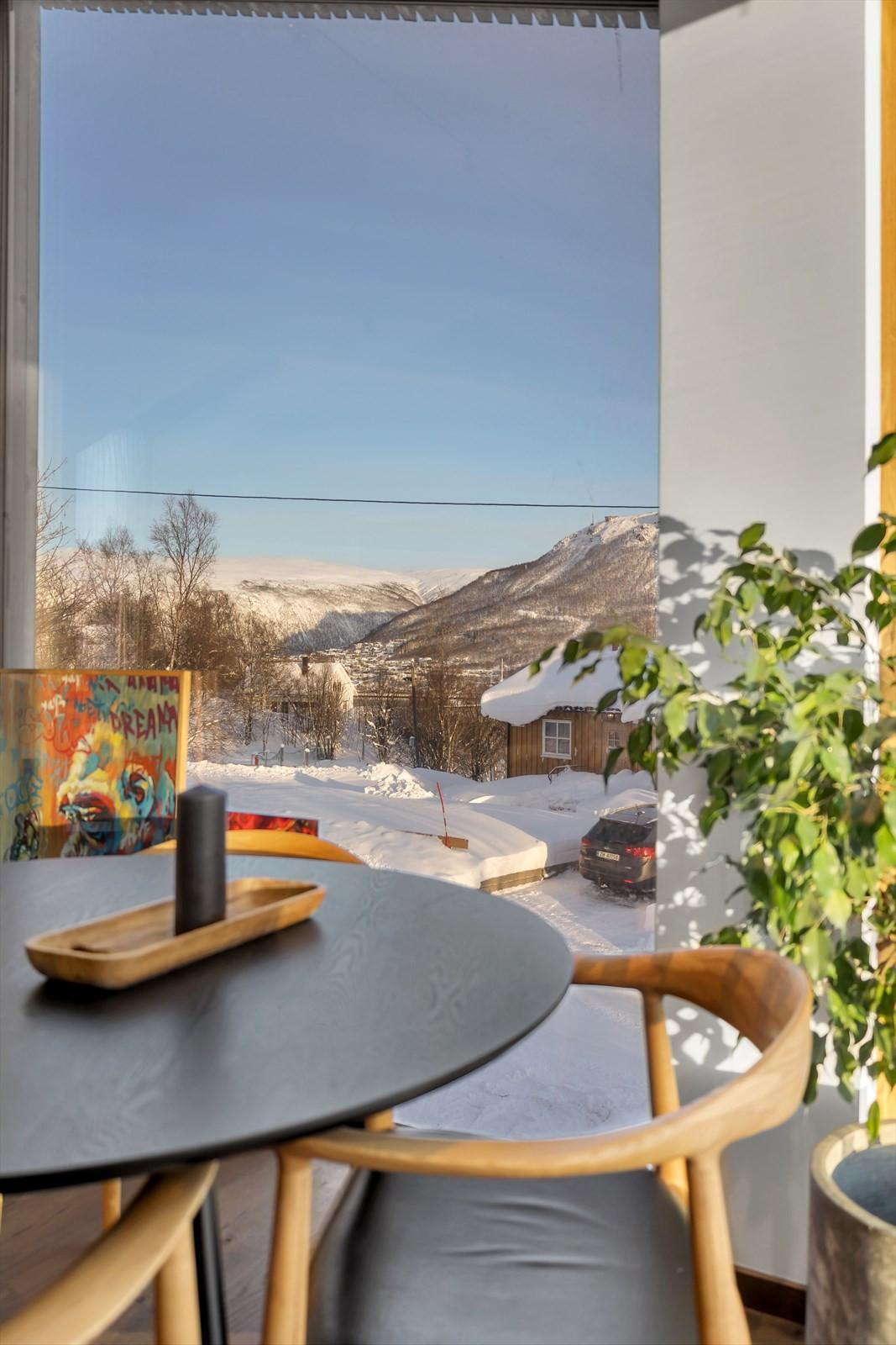 Utsikt mot Tromsdalen.