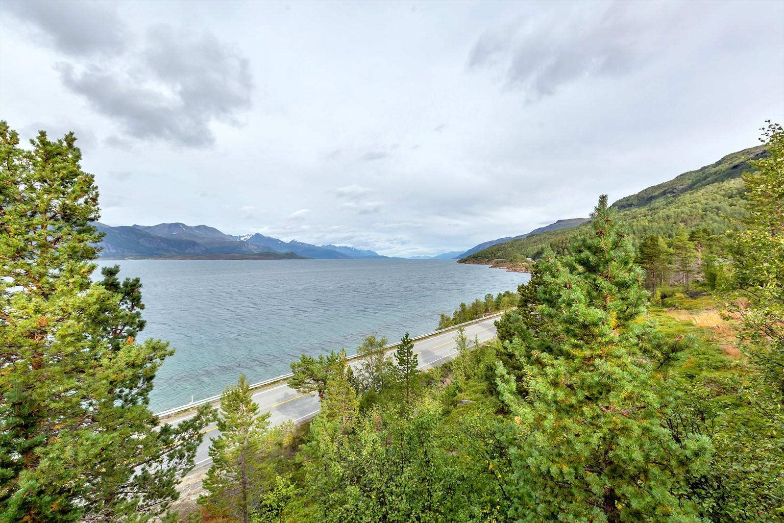 Utsikt ut fjorden