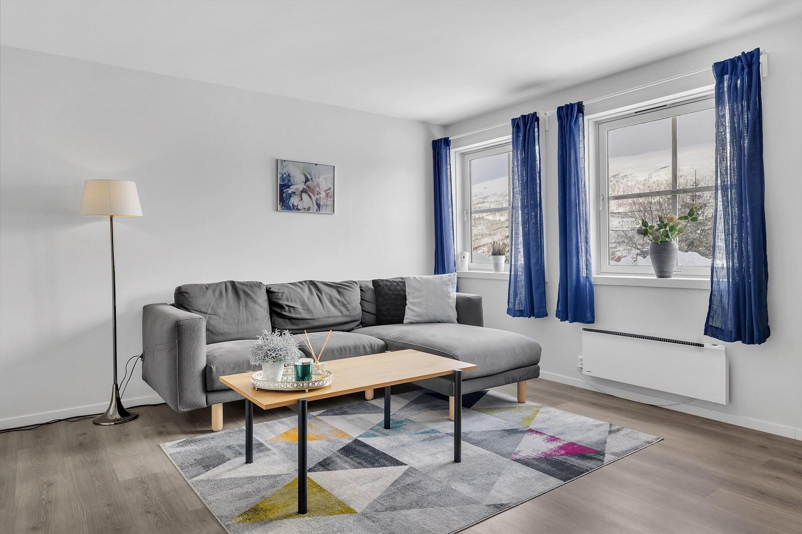Stue leilighet underetasje