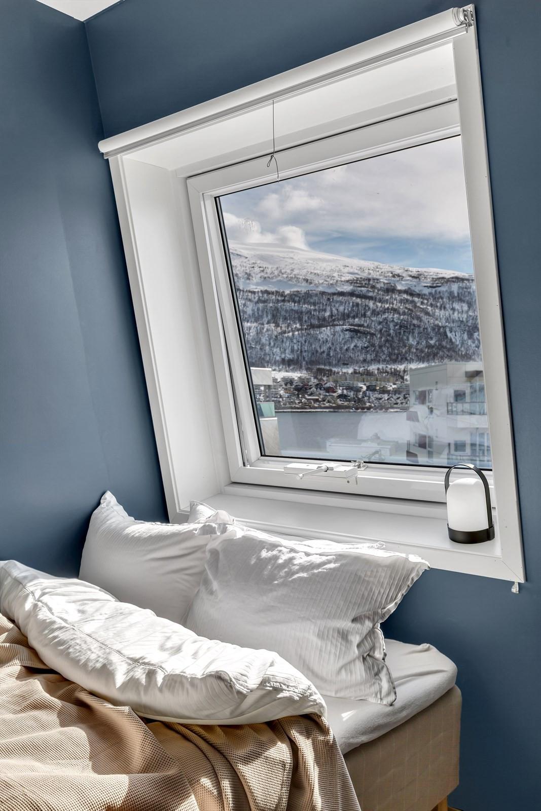 Nydelig utsikt fra soveromsvindu.