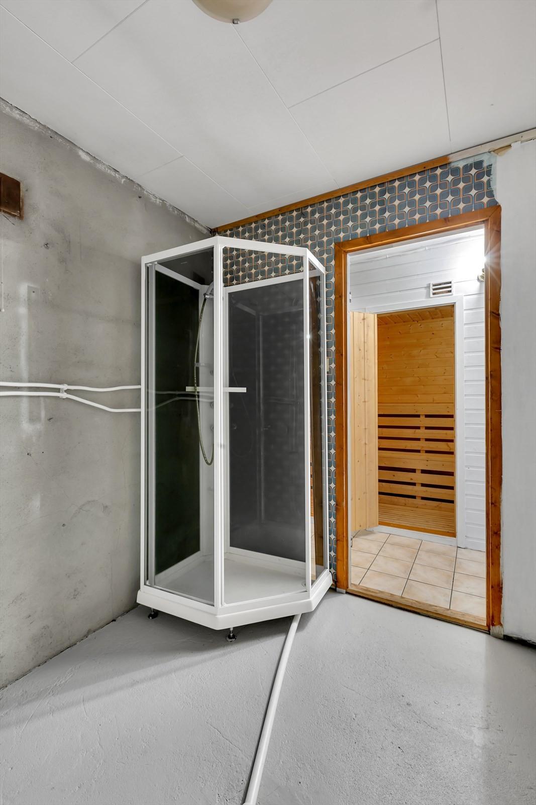 Badstu og bod med dusjkabinett i underetasjen.