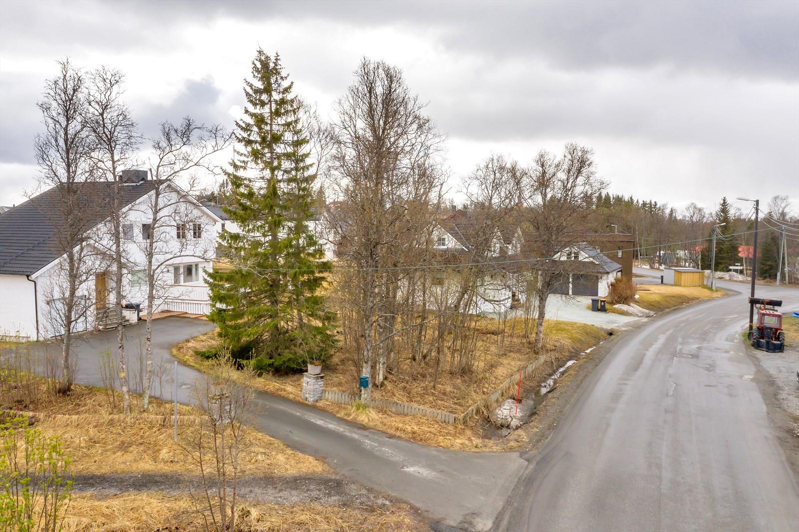 Tomten ligger sentralt plassert, like ved Sommerlyst skole i nord og Elverhøy kirke i Nord.