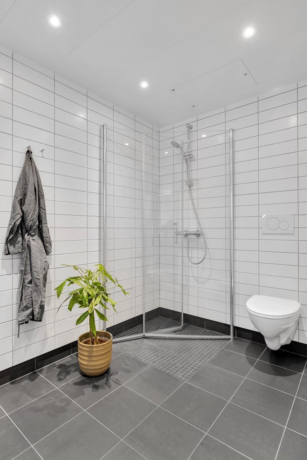 Vegghengt WC skål og innslagbare dusjdører i dusjnisjen