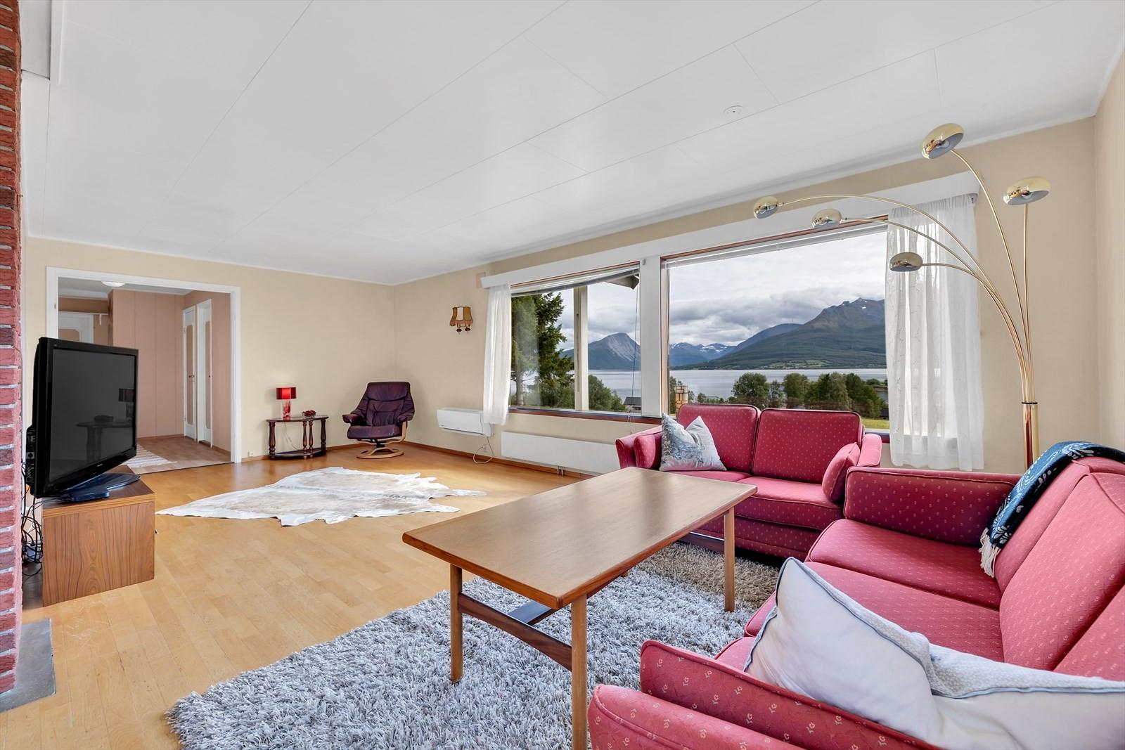 Stor stue med flere møbleringsmuligheter