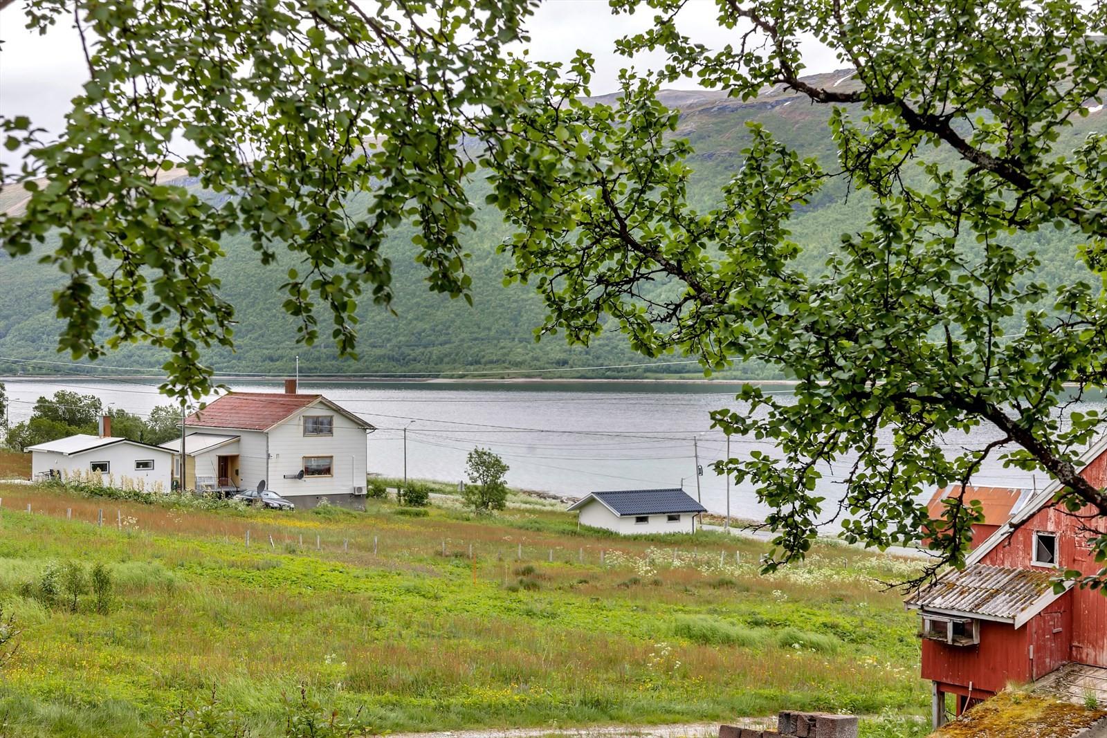 Spredt bebyggelse foran hytta.
