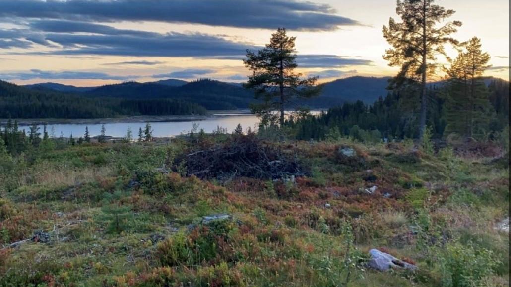 Flotte tomter med utsikt mot Breivatn