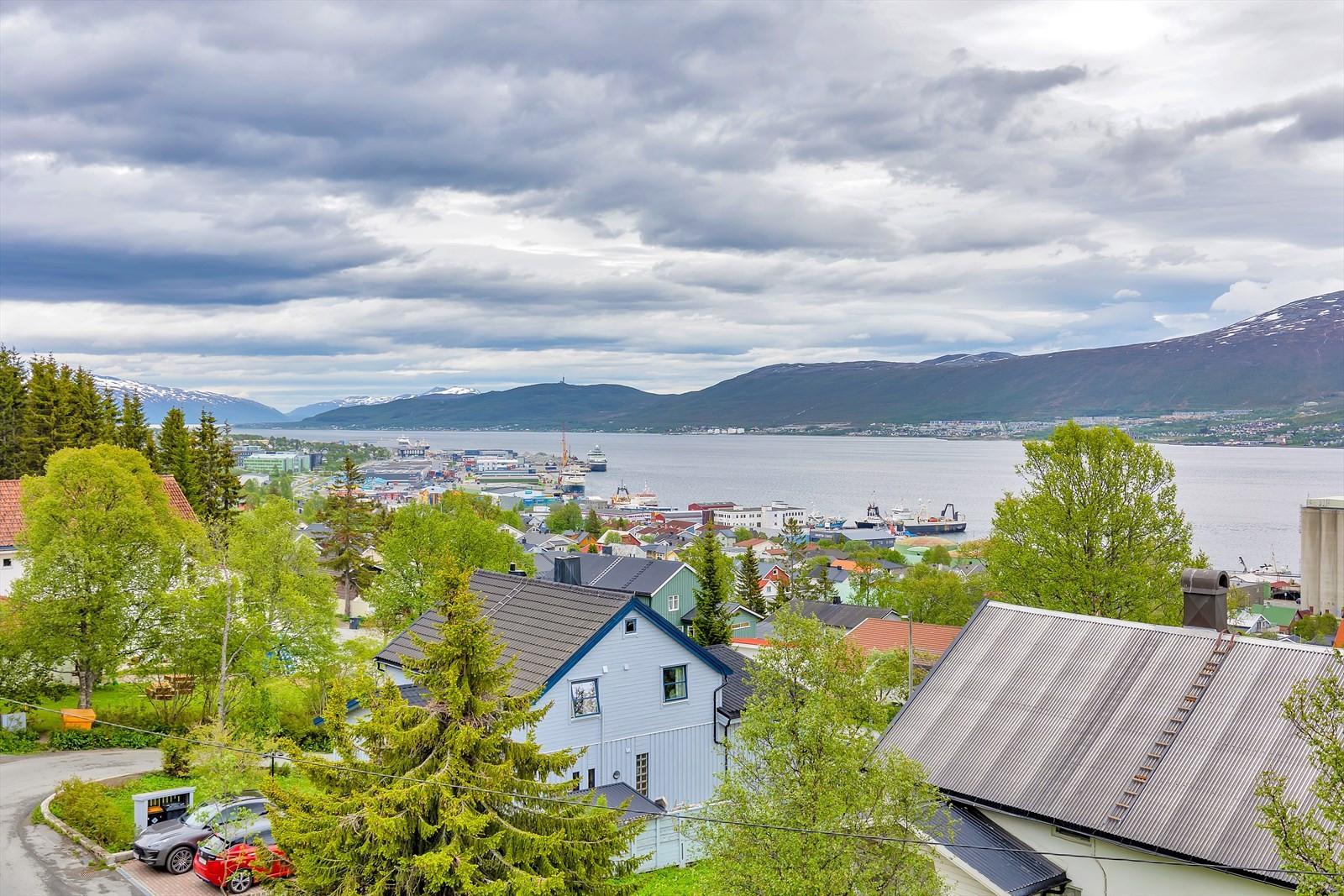 Utsikt mot nord - adkomst fra Dramsvegen