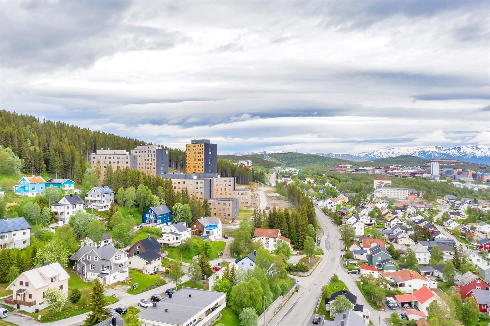 Universitetsområdet ses til høyre i bildet - Dramsvegen med bussforbindelse midt i bildet