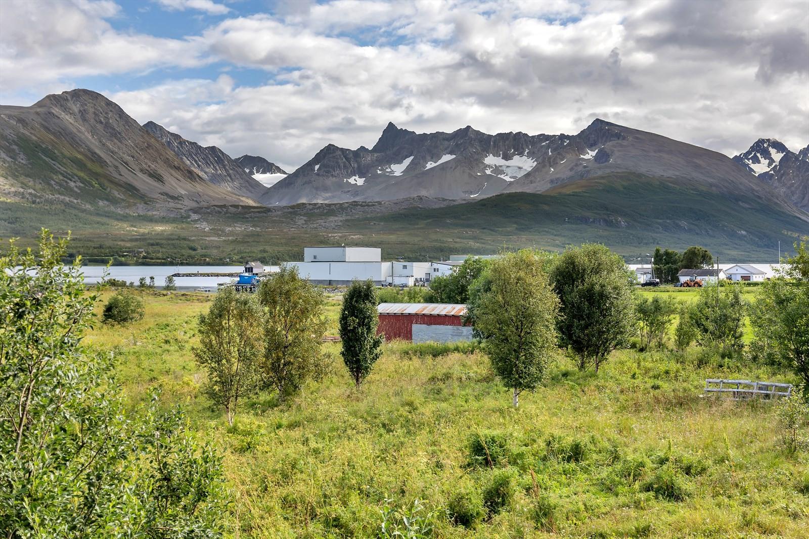 Lenangsøyra er viden kjent for festivalen Lyngen Rock og Reker