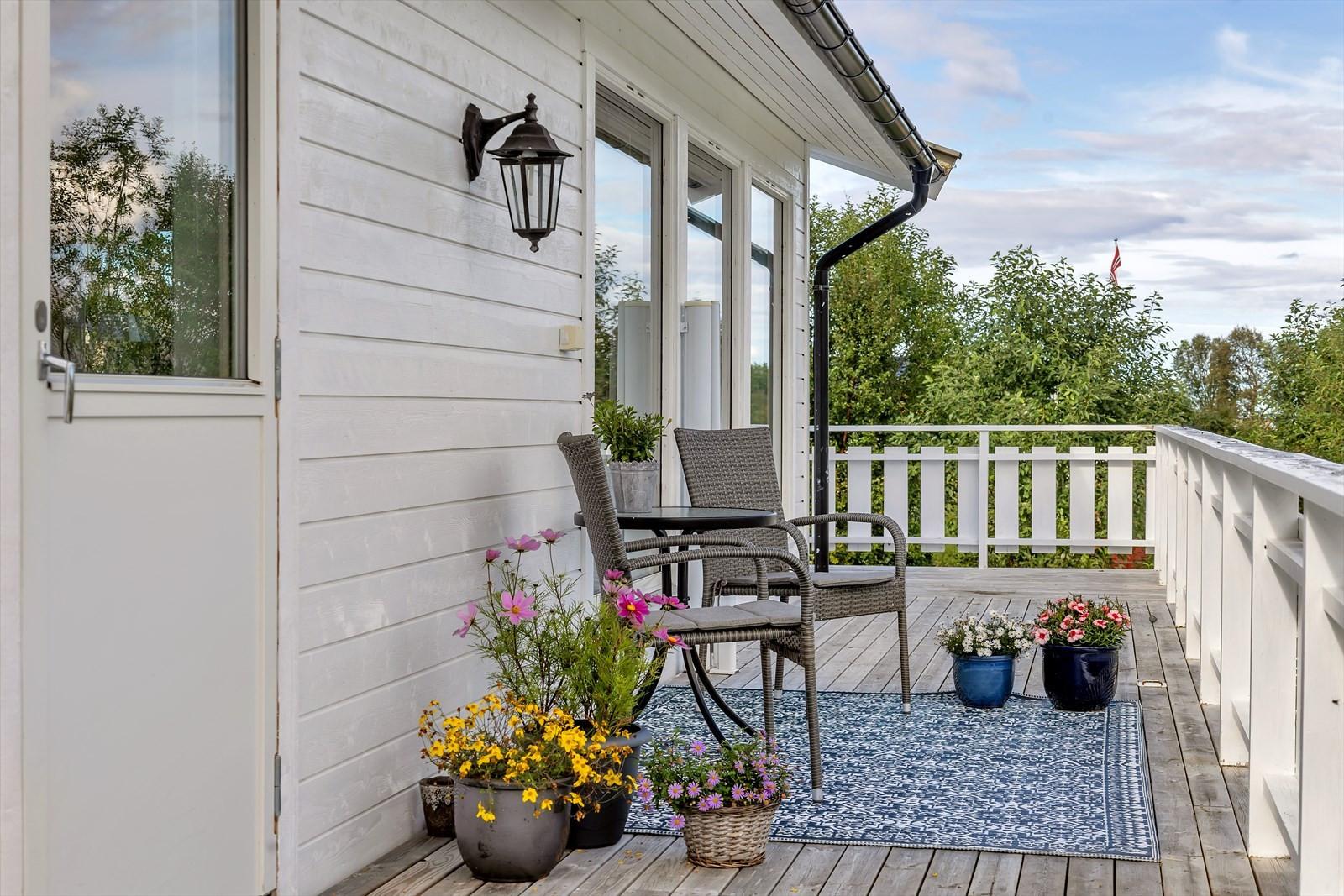 Fra verandaen kan man nyte mang en nydelig sommerdag