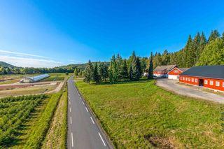 Reiersøl Eiendom & Planteskole AS