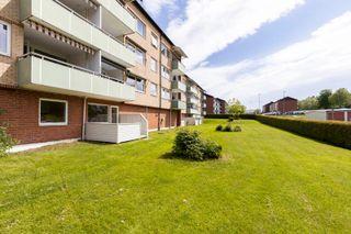 2-roms leilighet med sentral plassering på Stridsklev - Solrik uteplass