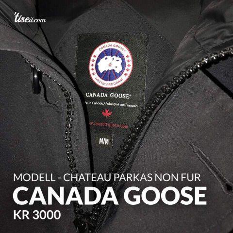 canada goose butikk drammen