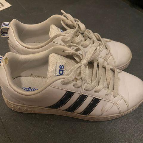 70 sko salg