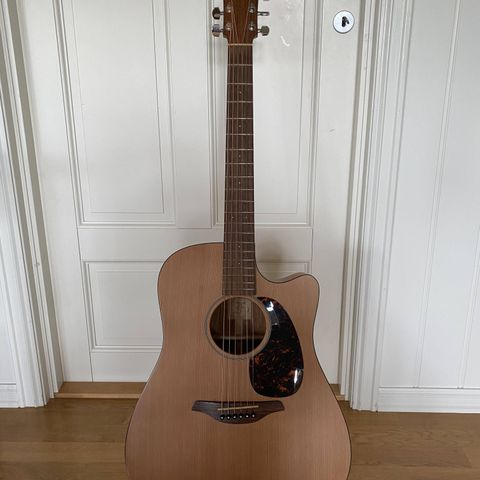 Gitar, med stativ og veske | FINN.no