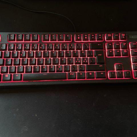 Razer Huntsman RGB ypperlig gaming tastatur! | FINN.no