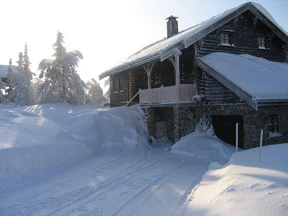 Vinter front