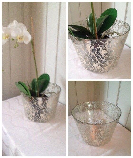 Herlig Stor blomsterpotte i fint glass H17 Ø24   FINN.no UX-16