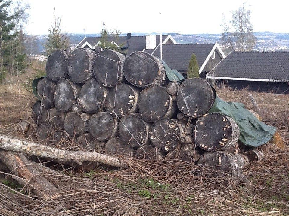 Storslået Billig ved, vedstubber og tømmer | FINN.no EM88