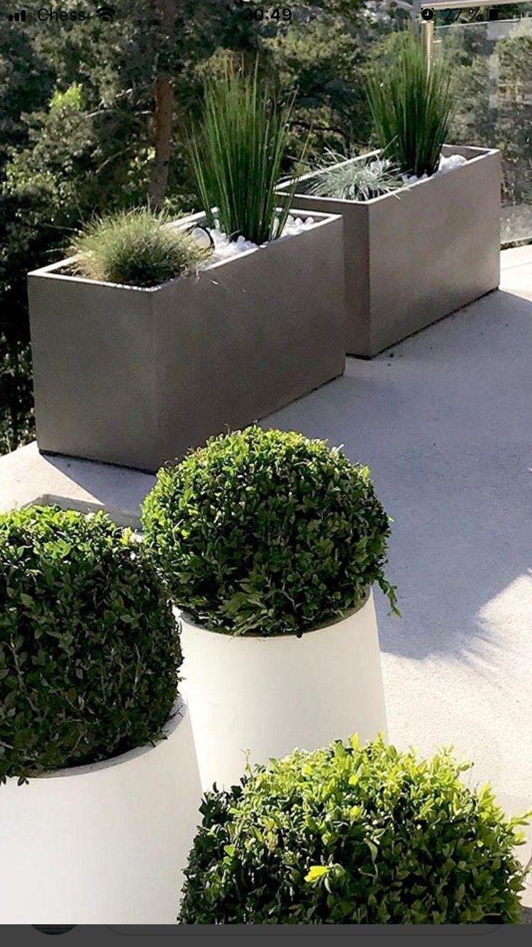 Populære FRI FRAKT Fresco Plantekasser/blomsterpotter/blomsterkasser/urner ZC-26