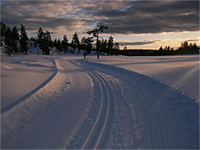 Siljan Kommune