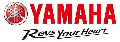 Bilbilde: Yamaha YZF R3 A2