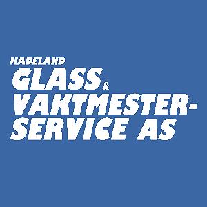 Hadeland Glass Og Vaktmesterservice As