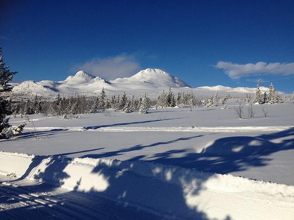 VISNING TUDDAL Buen Storodde L på Flugon – solsiden av Gaustatoppen. Ski in ski out