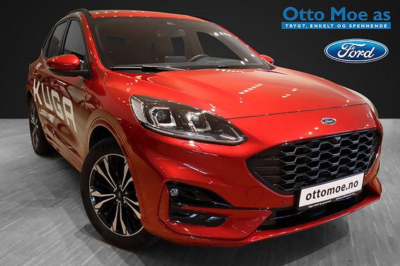 Ford Kuga 2.5 l bensin ladbar hybrid 225hk ST-Line aut HeadUp, LD  2020, 12000 km, kr 529900,-