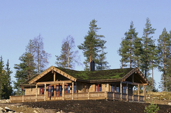 Staselig Buen hytte sentralt på Kvamskogen (kun 7 tomter)