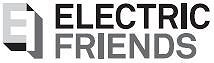 Electric Friends AS