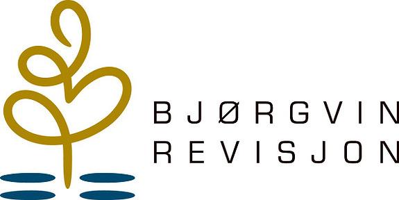 Bjørgvin Revisjon As