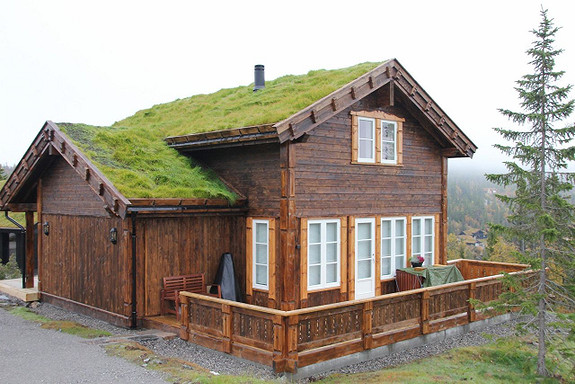 Lirypa – Hytte med 4 soverom, bad og bod/teknisk rom