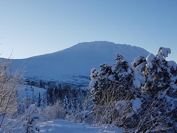 SINGELHYTTE BUEN COMPACT L (Hytte 21) Arkitekttegnet hytte på 110m2 BRA, 4 sov/2 bad. Ski in/out. Gaustablikk.