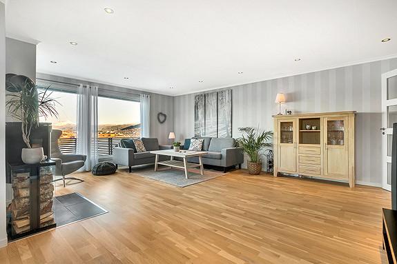 Romslig stue med flott utsikt