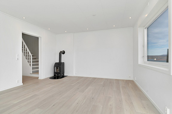Oppusset stue i 2021