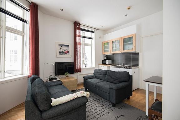 Sentral leilighet med sovealkove