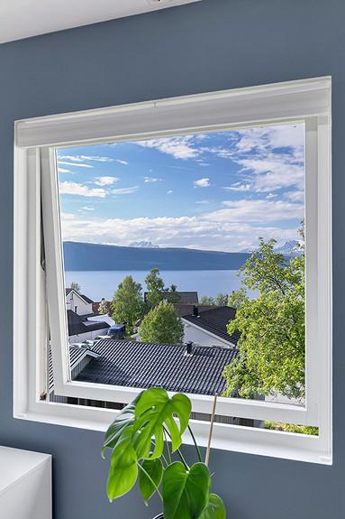 Utsikten fra stuen!
