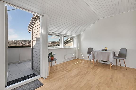 Stue med utgang til takterrassen