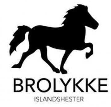 BROLYKKE ISLANDSHESTER