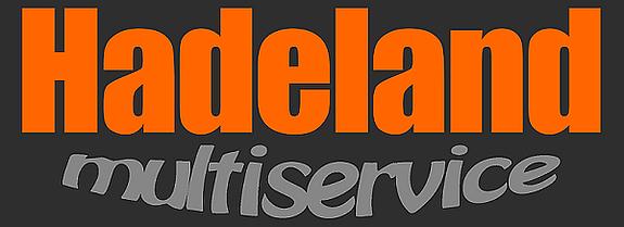 Hadeland Multiservice
